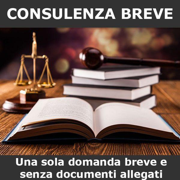 consulenza diritto civile breve