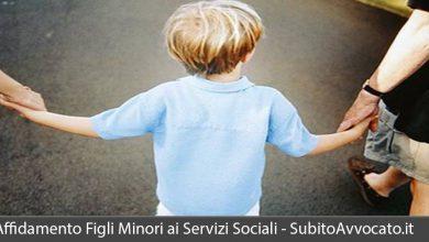 affidamento figli minori servizi sociali