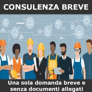 consulenza diritto lavoro breve