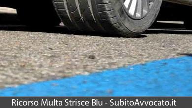 ricorso multa strisce blu